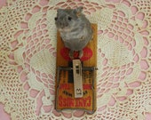 Taxidermy Mouse on a Vintage Mouse Trap. Blue.