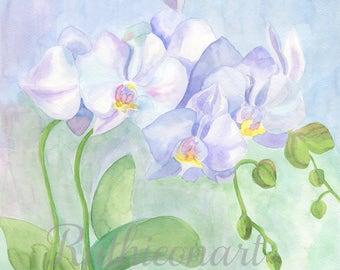 Orchid - Original Watercolor