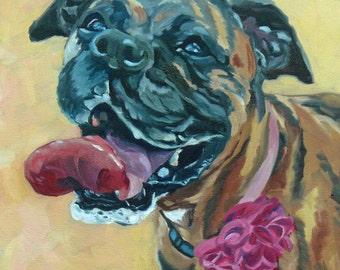 Brindle Boxer Dog Portrait