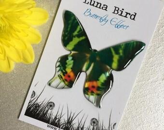 Butterfly Effect Brooch, Green (GB18) by Luna Bird for the 1200 Butterfly Wall at Butterfly Effect Exhibition