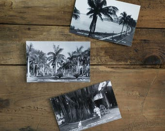1940s Palm Beach Post Cards / Black and White Gloss Postcards