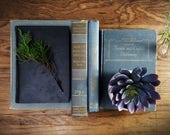 Vintage Collection of Books, French Cottage Decor, Distressed Blue Hues, Library Academic Books; Rustic Farmhouse Decor