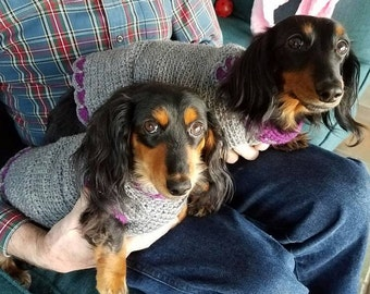 Cute doxie sweater. Hand made special for your dog.