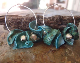 CREOLS with turquoise SHELLS & BELLS - Earrings (1622)