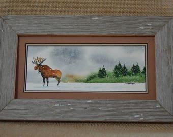 Moose wandering in winter (Framed) 4x8