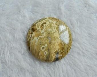 Fashion Natural Ocean Jasper Round cabochon Semi Gemstone  Gem Customized  gift for women fashion jewelry 35*35*5mm 10.2g