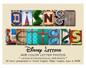 Disney Photo Letter Art,  Individual 4x6 COLOR Letter photos Alphabet Photography from Walt Disney World and DisneyLand