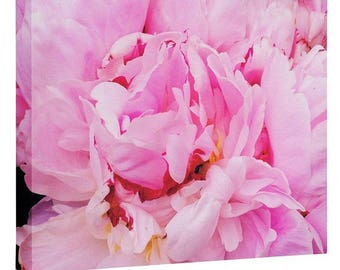 Pretty Pink Peony Wall Canvas. Floral Nature Photography. Landscape Botanical Spring Art Whimsical Shabby Chic Home Decor. Housewarming Gift