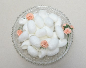15  silk cocoons  for Crafting , Handmade  Accessories