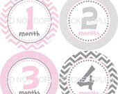 SALE Monthly Baby Milestone Stickers Baby Girl Pink Grey Gray Chevron Dots Bodysuit Baby Stickers Monthly Baby Stickers Baby Month Sticker