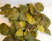 For Daisy / Silk Rose Leaves / Artificial Leaves / Crafting Leaves / Green Leaves / Floral Supply / Floral Leaves / Flower Filler Leaves