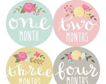 Baby Girl Monthly Stickers Monthly Baby Sticker INSTANT DOWNLOAD - DIY Printable pdf Milestone Stickers Vintage Flowers (Cursive Floral)