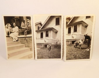 Vintage (3) 1930's Photos Pictures COLLIE and WOMAN - Black & White Photograph Lot - Dog