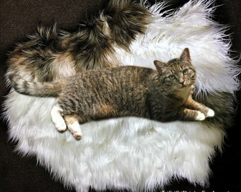 Faux Fur Sheepskin Throw Rug - Shaggy - Soft - Thick - Dog, Cat, Pet Bed - Fur Accents Designer Rugs USA