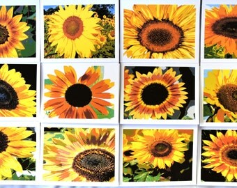 Painted Sunflowers Smiling at You - Notecards