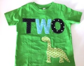 Second Birthday Shirt Dinosaur Dragon Green Birthday Boys Shirt two or Onesie gift photo prop funny Aqua navy gray
