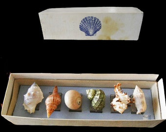 Beautiful Vintage 70s Set of 6 Sea Shell Napkin Ring Holders napkin holders napkin rings sea shells placemat accessory napkin pool party