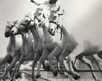 Trick Rider White Horse Ranch Naper Nebraska RPPC