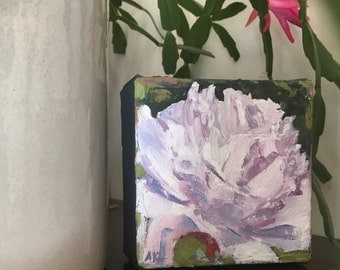 "White Peony, 4""x4"" Small, ORIGINAL, expressive , thick oil paint. Maine artist Adrienne Kernan LaVallee, impasto"