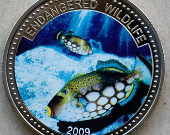 2009 Palau, 1 Dollar, Multicolored Fish Coin, Clown Trigger Fish, Endangered Wildlife