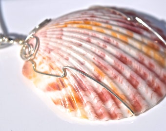 Scallop Sterling Silver Necklace