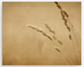 """Rustic Brown Nature Art Print 
