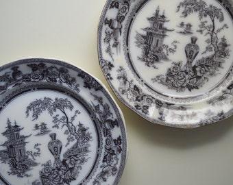 Mulberry Flow Black Transferware Ironstone Plate Set of 2 Jeddo, W. Adams Co. 1800's