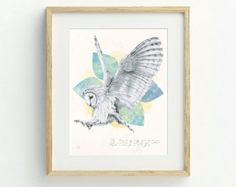 Barn Owl Art Print- Original Artwork, Barn Owl Illustration, Animal Art, Archival Print, Home Decor, Hand Drawn Owl Wall Art, Wildlife Art