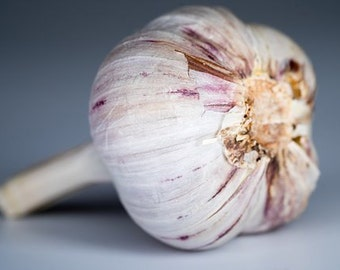 SALE -- Organic Powdered Garlic