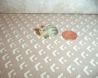 1:12 scale Dollhouse Miniature Tabby kitty