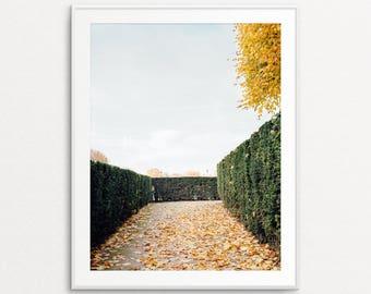 Autumn in Paris, Paris Photography, Tuileries Photograph, Paris Photography, Paris Print, Paris Wall Art, Paris Bedroom Decor, Paris Decor