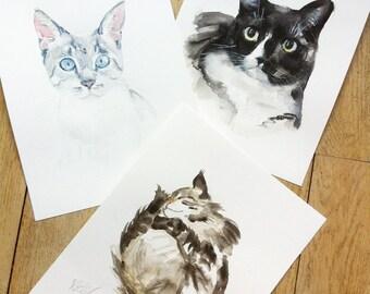 pet portrait, CUSTOM CAT PAINTING, Custom pet portrait, cat portraits, siamese cat, gift, custom pet, cat, pet portrait, Petshopofcolor