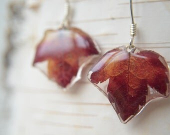 Maple bonsai leaves earrings Natural red fall leaves earrings Mothers Day gift for her Epoxy jewelry gift Elegant dangle silver earrings