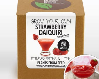 Grow Your Own Strawberry Daiquiri Plant Kit