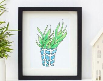 "Beautiful botanicals, Aloe Vera plant 10 x 8"" framed print"