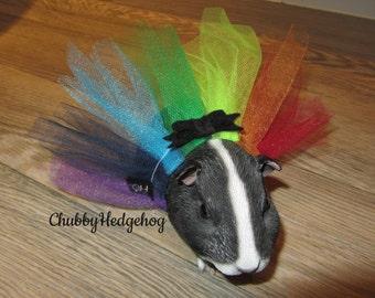 """Tutu """"FOLLOW THE RAINBOW"""" hedgehog/ Guinea pig costume"""