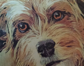 Collectable Retro A Little Golden Book Joe Camp's 'Benji Fastest Dog in the West' Soft Cover 1978