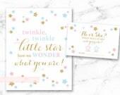 Twinkle Little Star baby shower, Gender reveal vote downloadable printable file, pink blue gold, boy or girl vote, INSTANT DOWNLOAD, 006