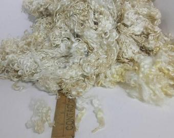 Washed Teeswater Gotland Lamb Locks Spinning Felting Doll Hair
