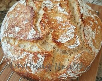 Wild Sourdough Wheat Bread Active Starter Probiotic Culture Yeast while flour