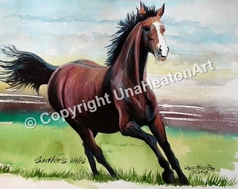 Sadlerswells Horse