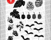 Vector Leaf Silhouettes S...