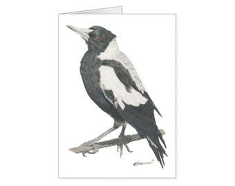 Magpie - Illustrated Card