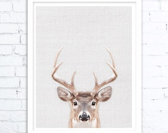 Animal Decor, Printable Art, Home Decor, Nursery Decor, Woodland Animals, Woodland Nursery, Animal Print, Deer Poster, Deer Head