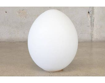 Large Frosted Glass Egg Lamp (A4SHEF)