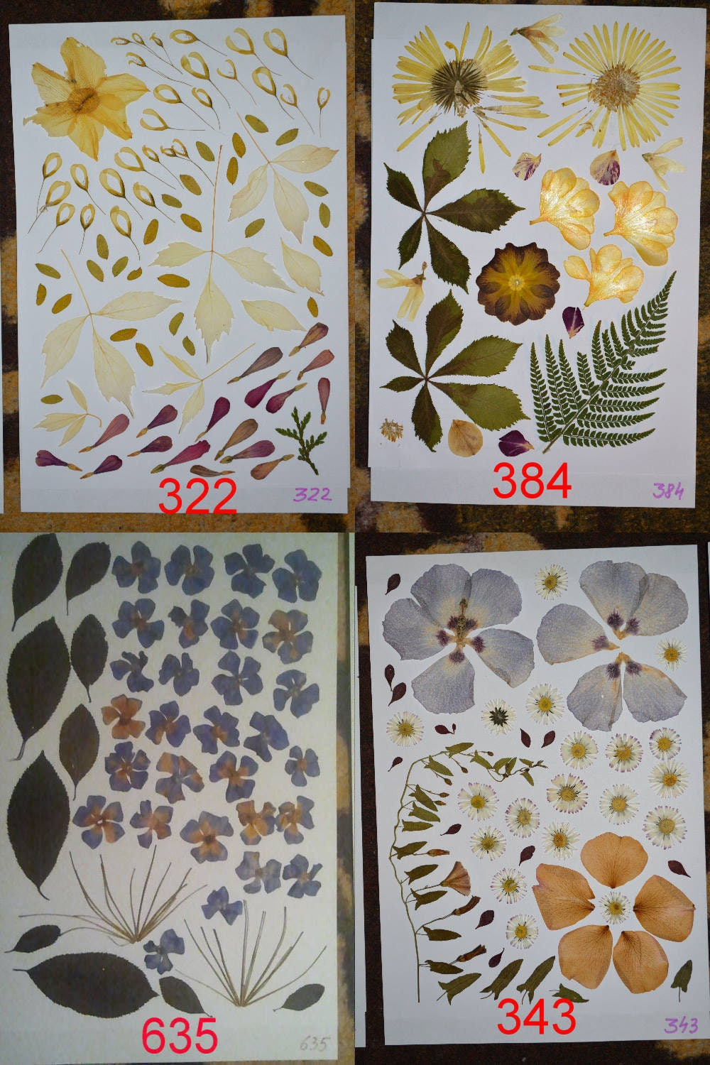 How to scrapbook pressed flowers -  3 49