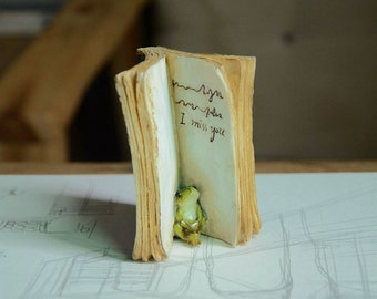 Fairy Garden  - Frog Hiding In Book - Miniature