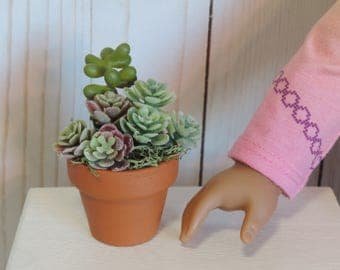 Potted Succulents Plant for American Girl Dollhouses, Photography Prop, Houseplant, Room Decor