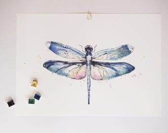 Wildlife: libelle