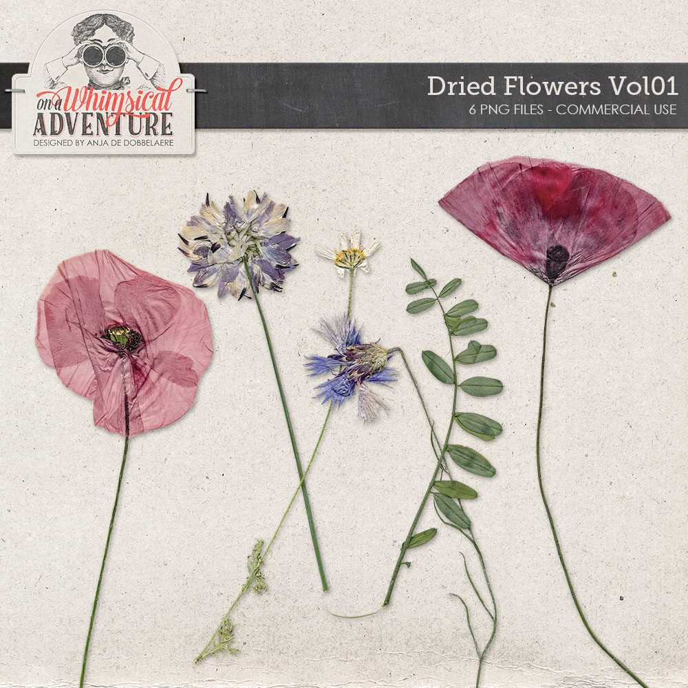 How to scrapbook dried flowers - This Is A Digital File